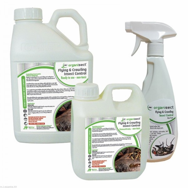 PROFESSIONAL ECO FRIENDLY TREATMENT FOR FLEAS & TICKS (Safe & Effective)