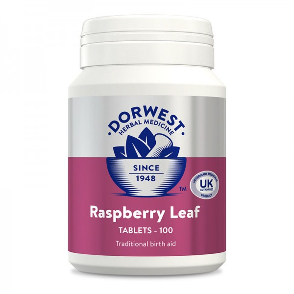 DORWEST HERBS RASPBERRY LEAF TABLETS INCREASES Assists Pregnancy in Dogs & Cats