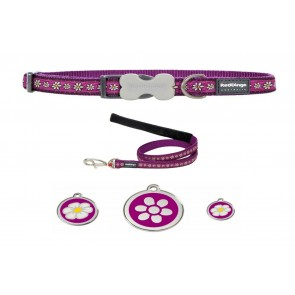 RED DINGO ADJUSTABLE DOG / PUPPY COLLAR & LEAD DAISY CHAIN PURPLE AND TAG