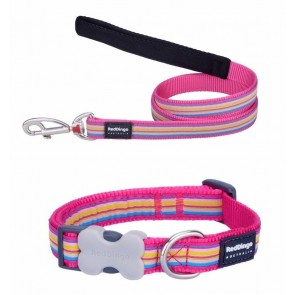 RED DINGO FULLY ADJUSTABLE DOG / PUPPY COLLAR & LEAD PINK STRIPE